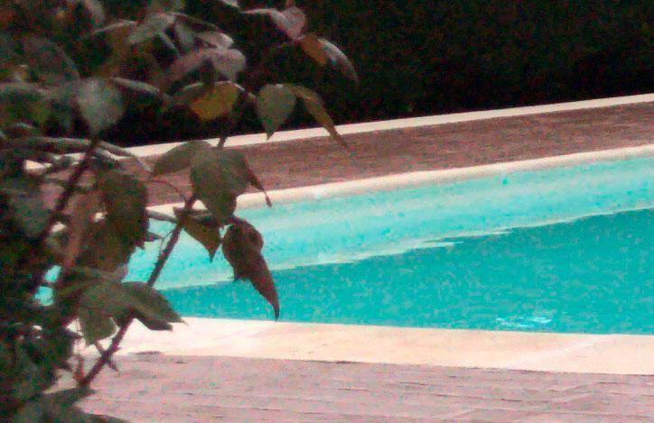piscina rehabilitada con lámina armada